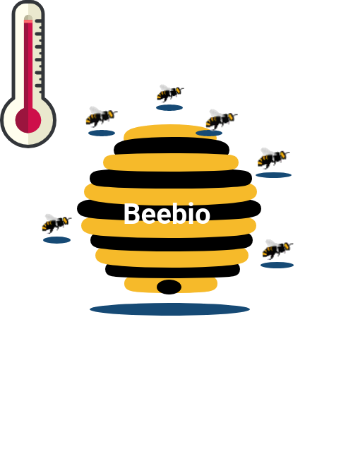 Honey bee temperature