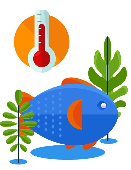 Fresh water temperature